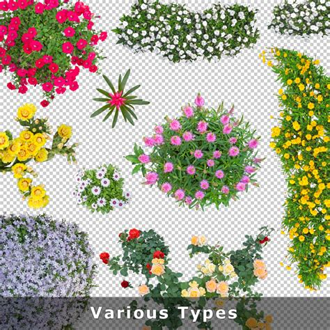 flower garden planner top view flowers cutout plan view images png for