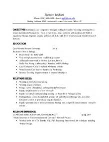 exle of professional resume 2015 resume 2015