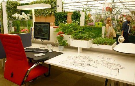 plante de bureau feng shui healthier office spaces benefit everyone treehugger