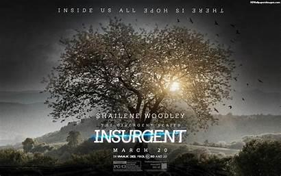 Divergent Insurgent Wallpapers Background Tree Four Fanpop