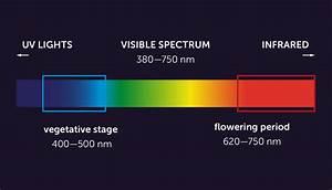 Best Light Spectrum To Grow Cannabis Growdiaries