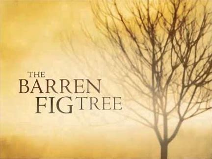 Image result for parable of the fig tree
