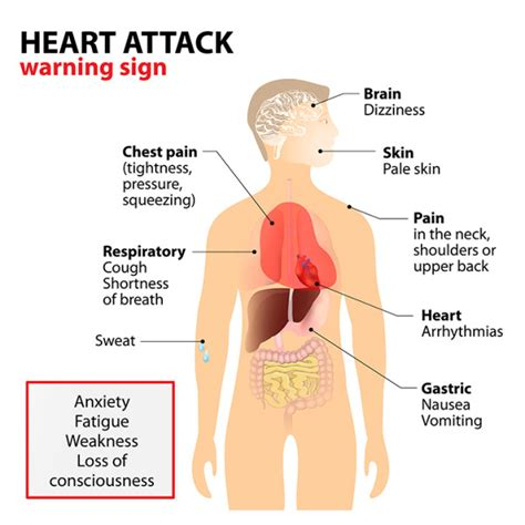 What Causes Heart Attacks—and How To Prevent Them. Hilton Credit Card Bonus Visa Signature Chase. National Security Campus High Tech Landscapes. Breast Cancer Supporters Arizona Call Centers. Christian Healthcare Center New Age Diamonds. Brinks Home Security Customer Service. Minnesota Valley Federal Credit Union. International Incentive Travel. Hair Transplantation In Hyderabad