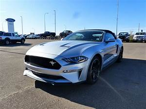 2019 Ford Mustang for sale in Medicine Hat, AB serving Southern Saskatchewan | New Ford Sales