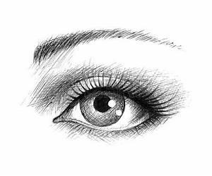 Dessin Facile Yeux : dessin noir et blanc l 39 oeil humain illustration vectorielle illustration dessin pinterest ~ Melissatoandfro.com Idées de Décoration