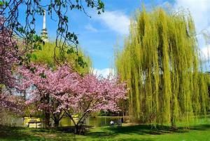 Essen Bestellen Mannheim : panoramio photo of mannheim luisenpark ~ Eleganceandgraceweddings.com Haus und Dekorationen