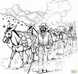 Coloring Forty Caravan Pages Mule Niner Rush Gold Camel Donkeys Printable 1849 California Drawing Main Popular Definition Skip Supercoloring Categories sketch template