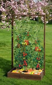 Tomaten Rankhilfe Selber Bauen : pflanzkasten mit rankgitter ~ A.2002-acura-tl-radio.info Haus und Dekorationen