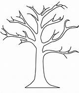 Trunk Tree Line Drawing Outline Clipart Palm Getdrawings sketch template