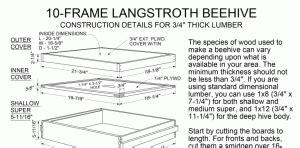 build  beehive