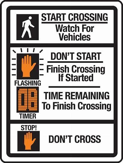 Pedestrian Signals Countdown Signal Crossing Florida Driver