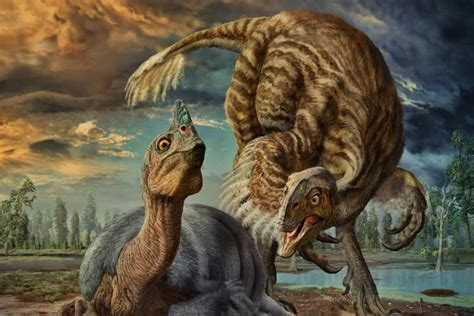 Baby Dinosaur Fossil Revealed To Be An Entirely New