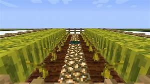 Semi-Automatic Melon Farm Minecraft Project
