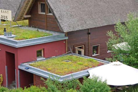 Dachbegruenung Natuerliche Klimaanlage by Die Vorteile Einer Dachbegr 252 Nung Dachbegr 252 Nung