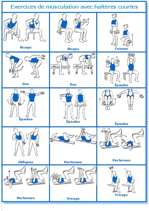 programme musculation homme maison musculation a la maison un peu de m 233 thode sant 233 r 233 gime et nutritionsant 233 r 233 gime et nutrition