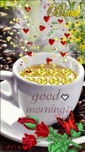 Good morning animated gif pics for sending to your friend, beloved one or to your family. Pin on Bom dia