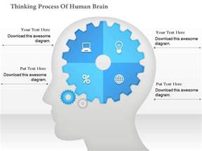 Human Brain Thinking Process