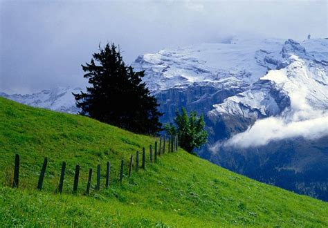 nature hd wallpapers p widescreen awam pk