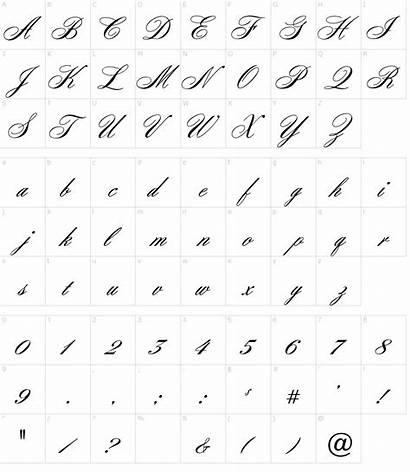 Font Zoom Script Fonts Character