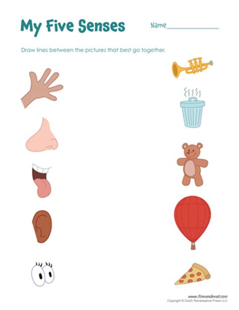 senses worksheets  kids  senses craft