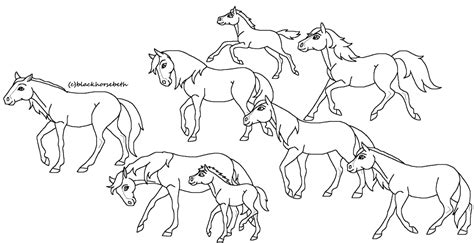 Wild Horses Coloring Pages Meningrey