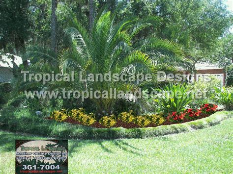tropical landscape ideas tropical landscaping designs of ta bay