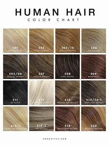 Light Ash Brown Hair Colour Chart With Images Hair
