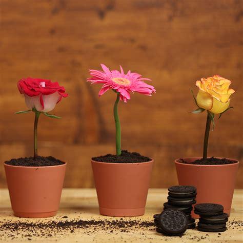 picture of a flower pot flower pot part 2 weneedfun