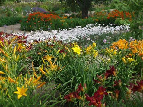 how to garden perennial garden design ideas diy
