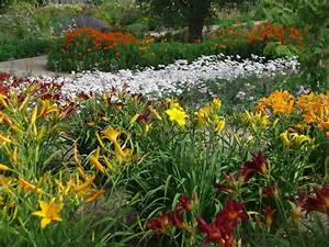 Perennial Garden Design Ideas