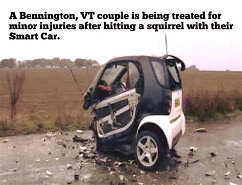 Vs Smart Car by Smart Car Vs Squirrel Pics Funnyism Pictures
