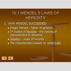 Chapter 10 Mendel