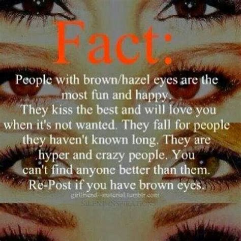 Facts About Brown Hair by Brown Makeup For Brown Eyed Brown Eye