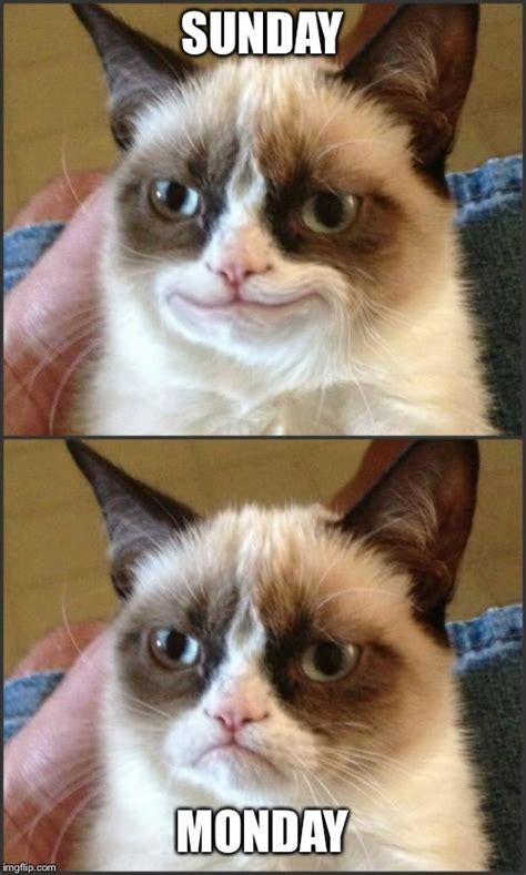 Create A Grumpy Cat Meme - happy grumpy cat photoshop imgflip
