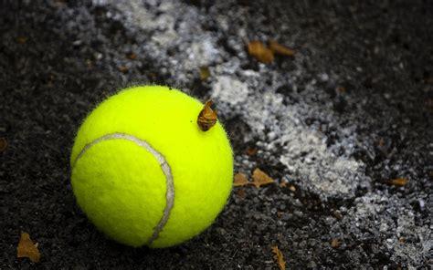 tennis court wallpaper  wallpapersafari
