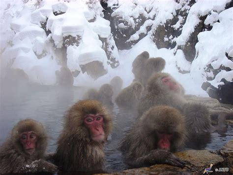 bagno caldo un bagno caldo nella neve