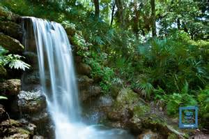 Rainbow Springs State Park Florida