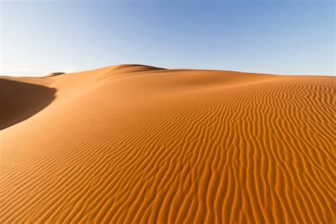 years   sahara desert   tropical jungle