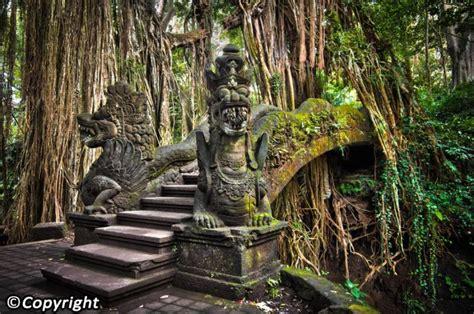 Kata proposal sendiri berasal dari bahasa inggris to propose yang artinya mengajukan. Hutan Kera Di Bali, Salah Satu Wisata Favorit Di Bali - indo seek it