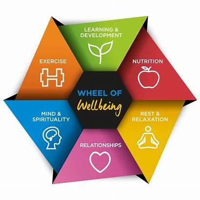 Wheel Mental Wellbeing Healthy Health Lifestyle Balance