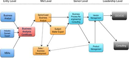 business analyst  systems analyst certificate programs