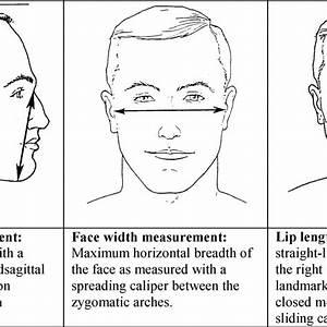 34 Respirator Facial Hair Diagram