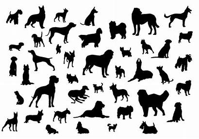 Dog Silhouettes Vector Silhouette Paw Svg Clip