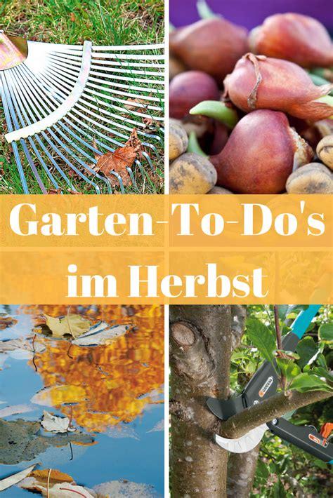 Garten Winterfest Machen Schneiden by Garten Winterfest B 228 Ume Schneiden Blumenzwiebeln
