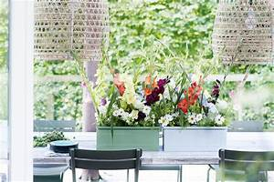 Kunststoffdielen Für Terrasse Und Balkon : blumenkasten bepflanzen und andere ideen f r balkon und ~ Michelbontemps.com Haus und Dekorationen