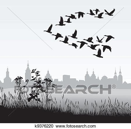 migrating wild geese   country clipart