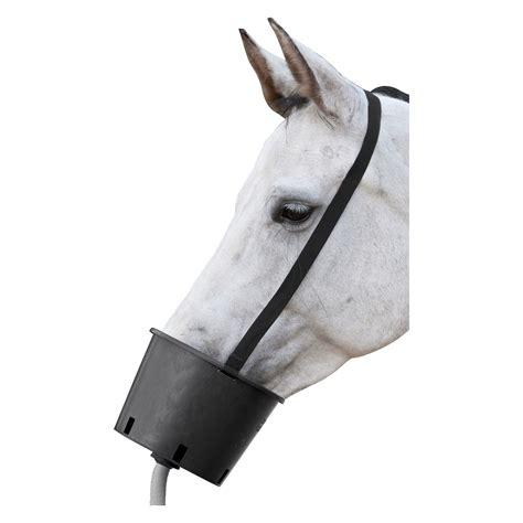 stallapotheke pferd loesdau passion pferdesport