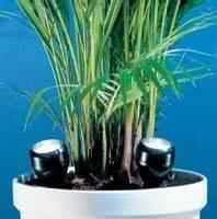 Lampen Für Pflanzen : welche pflanzen wachsen in einem bad ohne wirkliches tageslicht badezimmer zimmerpflanzen ~ A.2002-acura-tl-radio.info Haus und Dekorationen