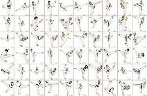 Taekwondo  List Of Taekwondo Kicks