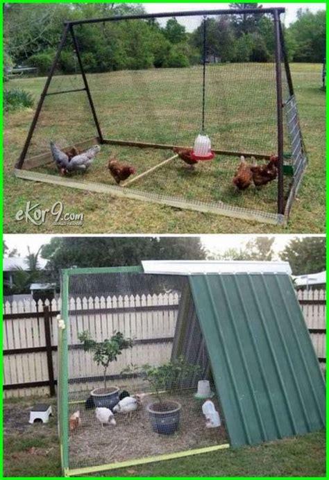 gambar kandang ayam  sederhana tetap kreatif